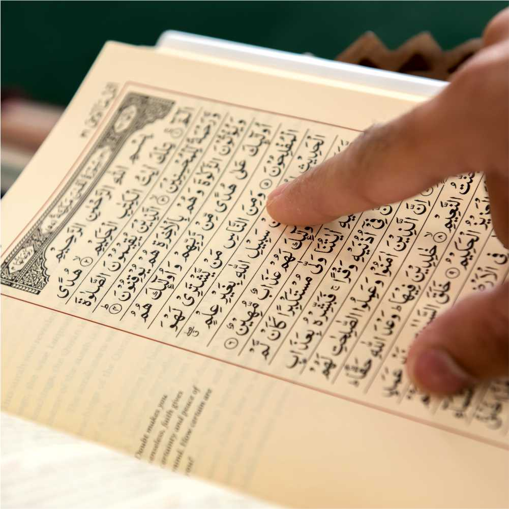 The Majestic Quran (Second Edition)